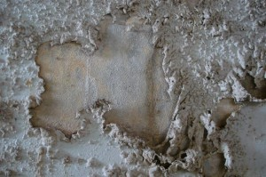St-Catherines-Fort-052012-Inside-walldetail2