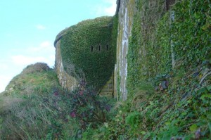 St-Catherines-Fort-052012-fortleft3